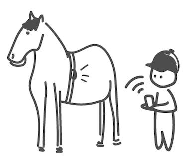 EKILY Veille sur le bien-être de votre cheval